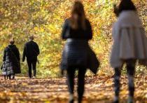 Германия: Социальные контакты будут максимально ограничены
