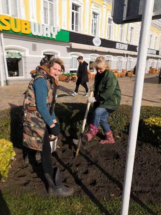 В Ставрополе высаживают морозоустойчивые цветы