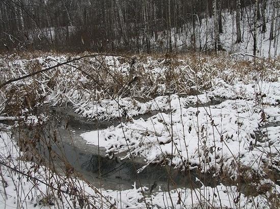 Сливы канализации по Иркутскому тракту начались заново…
