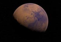 Марсианскую среду создали в МГУ сотрудники кафедры биологии почв факультета почвоведения