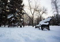 Циклон принес в Новосибирск затяжной снегопад: какая погода будет 18 ноября