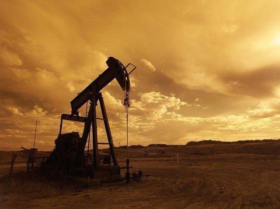 5031a1d7d49cd9f427ffd504cf41b75d - ОПЕК+ отложила расширение нефтедобычи