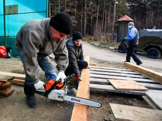 """В питомнике """"К-9"""" их лечат, волонтеры строят для них будки"""