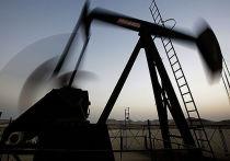 «Роснефть» привлекла первого партнера в мегапроект «Восток Ойл»