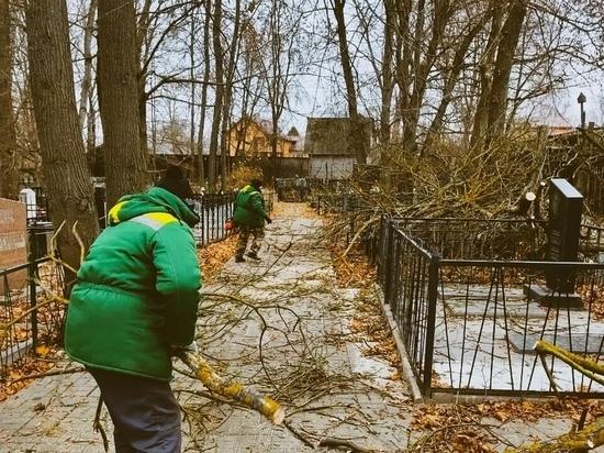 В Калуге Семеновское кладбище освободили от аварийных деревьев