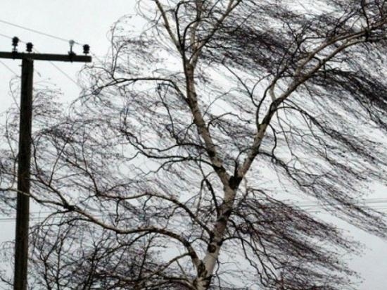 19-20 ноября в Чебоксарах ожидается «желтый» уровень погодной опасности