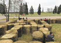 Выход из положения, как развлечь посетителей в период пандемии и при этом не нарушить никакие санитарные нормы, придумали в музее-заповеднике «Бородинское поле»