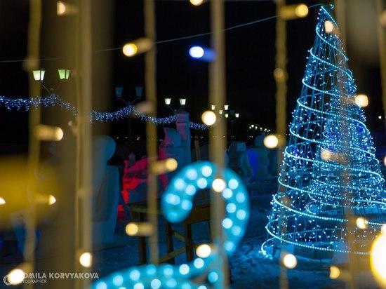 Вкус Нового года: 16 искусственных и живых елей украсят Петрозаводск