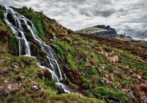 Была названа лучшая экологическая тропа года в Кузбассе