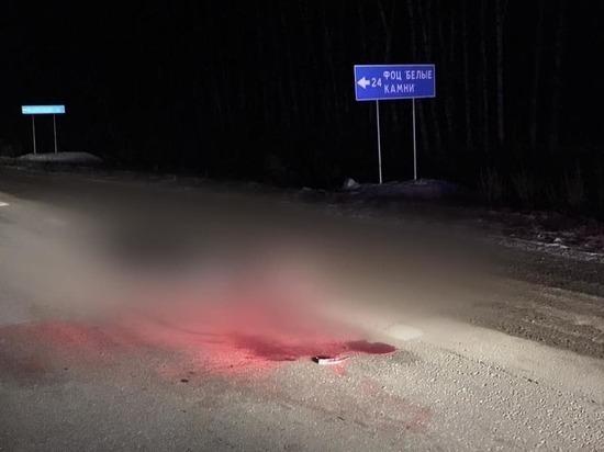 В Чувашии водитель насмерть сбил пешехода и скрылся, ищут
