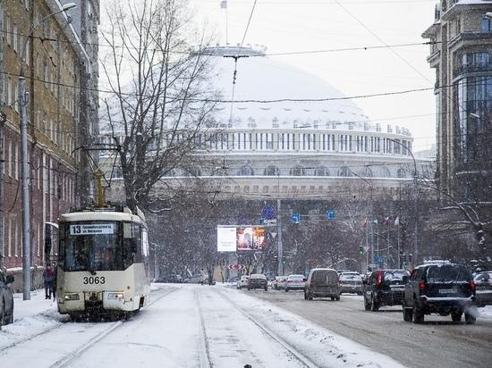 Неожиданный прогноз: что Новосибирску приготовил наступающий год Быка