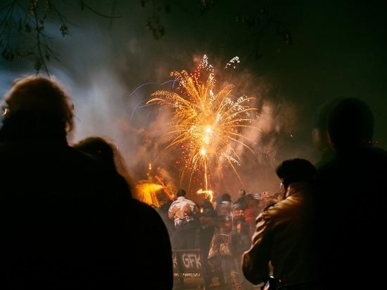 Политики и полицейские в Германии за запрет фейерверков в канун Нового года