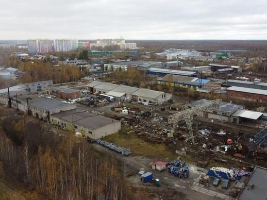 Проверка предприятий в Озерках: кому штраф, кому предупреждение