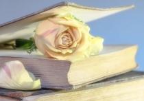 Что почитать на выходных: 10 книг авторов фестиваля «Белое пятно»