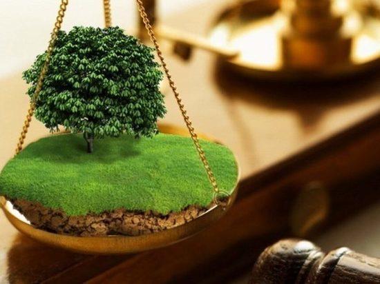 В Чувашии экс-глава поселения получил условный срок за разбазаривание государственной земли