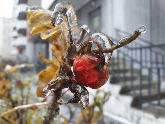 По словам специалистов, ледяной дождь невозможно спрогнозировать заранее