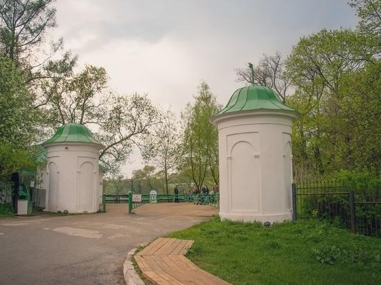 Здесь жил Толстой: какой была Ясная Поляна