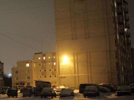 Более 60 тысяч светильников заменят в областном центре за год