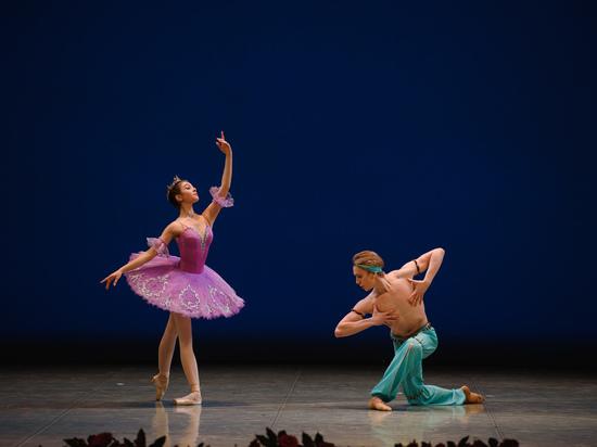 Владимир Васильев: «В современной хореографии не должно, казалось бы, быть никаких ограничений»