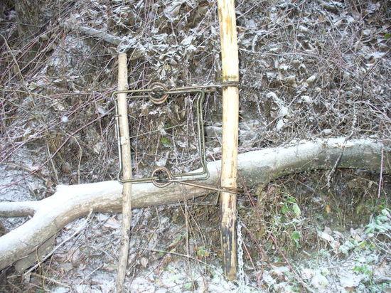 В Тверской области напавший на инспектора браконьер получил условный срок