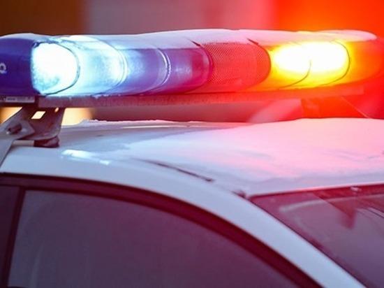 Две женщины на «Ровере» врезались в дерево в Тверской области – одна погибла