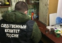 В Энгельсе Саратовской области мужчина убил 6-летнего мальчика, которого у него дома оставил приятель