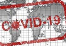 Пандемия коронавируса может привести к вспышке кори