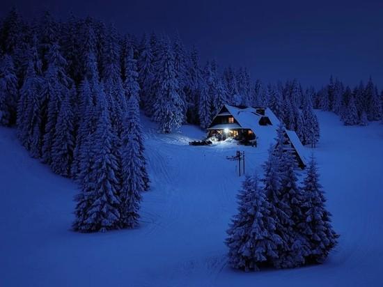 Эксперты «МК» объяснили, на что обращать внимание, если вы собираетесь встретить зимний  праздник  на чужой даче