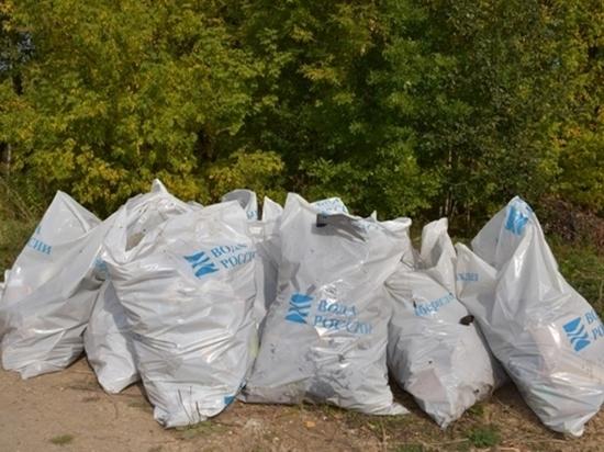 Волонтеры очистили 118 км прибрежной территории Марий Эл
