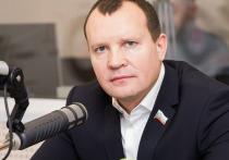 Псковский депутат: Отчитываться перед Полонской я не собираюсь