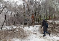 Все выходные это напоминало сценарий фильма ужаса: студенческий городок на острове Русский, отрезанный от цивилизации в результате стихийного бедствия в Приморье