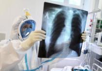 Рекорд: на Кубани умерли семь человек с диагностированным COVID-19