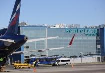 Волгоградский аэропорт проверили на коронавирус