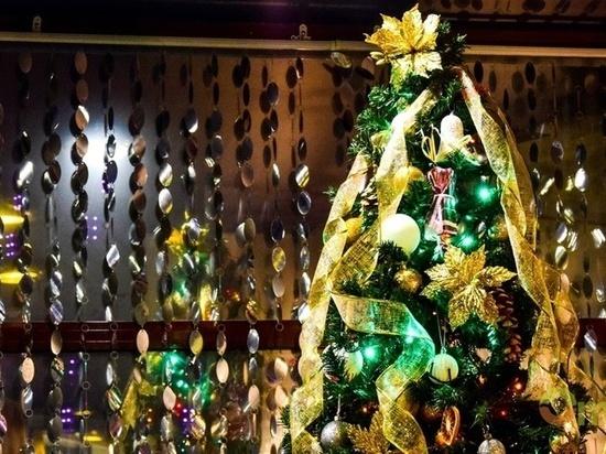 Новогодняя елка в Омске  пройдет в онлайн-режиме
