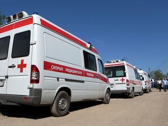 В крови сбитого машиной 9-летнего россиянина нашли алкоголь
