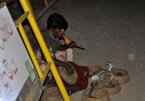 Как невезучий британец стал везунчиком в Индии