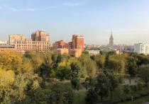 Коронавирус не помешает озеленению Москвы
