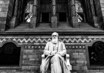 Две рукописи Дарвина пропали из Кембриджского университета