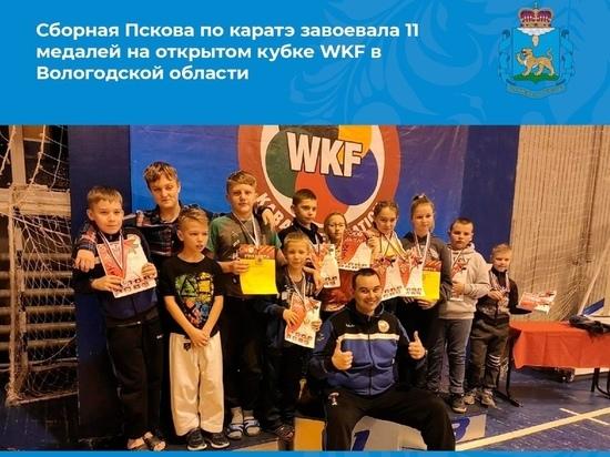 Псковичи завоевали 11 медалей на открытом кубке по каратэ