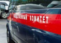 Башкирские следователи выяснят, почему в крови сбитого машиной мальчика обнаружили алкоголь
