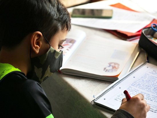 32 школьных класса в Белгородской области перевели на дистанционное обучение