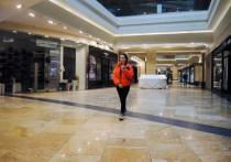 Российский Минпромторг предложил региональным властям организовать работу фудкортов на территории торговых центров по-новому