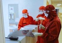 В Рязанской области выявлено рекордное число новых случаев коронавируса