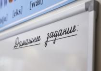 Стал известен возможный мотив конфликта между учительницей и учеником в одной из петербургских школ