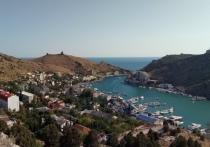 Древнее дерево Фиолент: картинки с Крымского полуострова