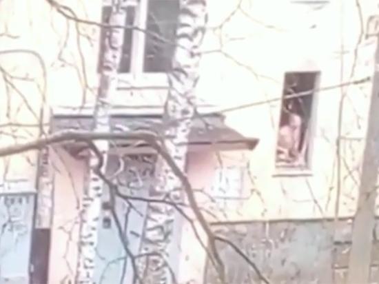 В Петербурге пропала мать шестерых детей, которые были взяты в заложники ее супругом