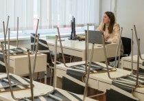 Минпросвещения опубликовало рекомендации для школ по организации дистанта