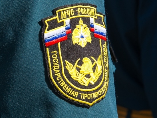 """В Тульской области орудуют """"спасатели"""" - мошенники"""