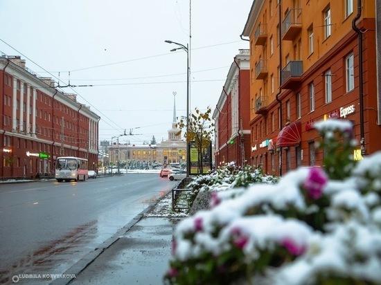 25 ноября: главные новости дня по версии «МК в Карелии»