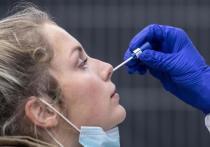 Германия: Экспресс-тесты на антигены в аэропорту Франкфурта